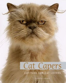 Cat Capers: Catitude for Cat Lovers