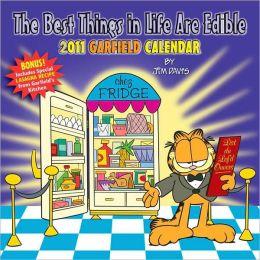 2011 Garfield Wall Calendar