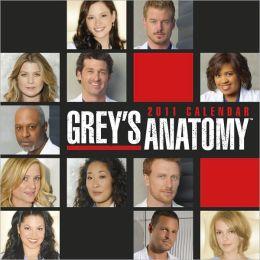 2011 Greys Anatomy Wall Calendar