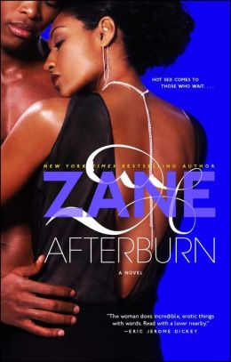 Zane's Afterburn: A Novel