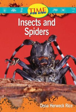 Insects and Spiders: Upper Emergent