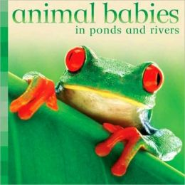 Animal Babies in Ponds and Rivers (Animal Babies Series)