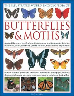 The Illustrated World Encyclopedia of Butterflies and Moths: A Natural History and Identification Guide