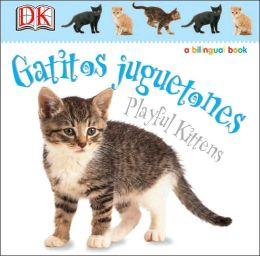 Gatitos juguetones / Kitten Games