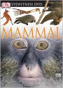 Mammal (DK Eyewitness Books Series)