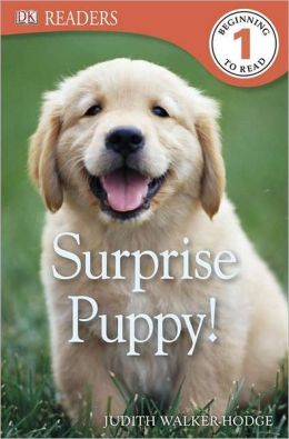 Surprise Puppy (DK Readers Series Level 1)