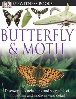 Butterfly and Moth (DK Eyewitness Books Series)