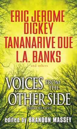 Voices From The Other Side: