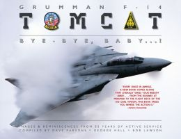 Grumman F-14 Tomcat: Bye - Bye Baby...!: Images & Reminiscences From 35 Years of Active Service