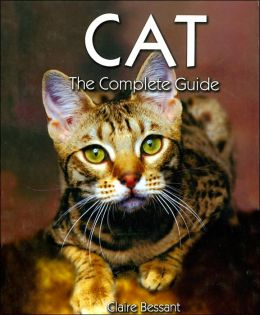 Cat: The Complete Guide