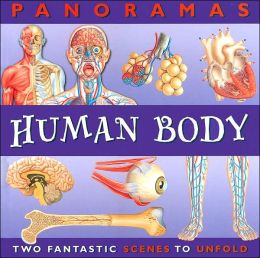 Human Body (Panoramas Series)