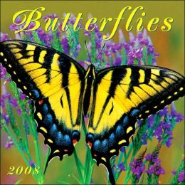 2008 Butterflies Mini Wall Calendar