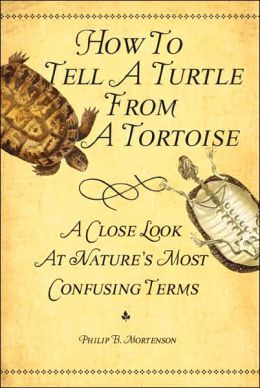 How to Tell a Turtle from a Tortoise: A Close Look at Nature's Most Confusing Terms