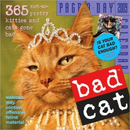 2009 Bad Cat Page-A-Day Calendar