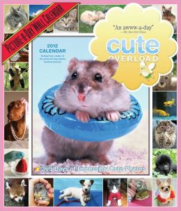 2012 Cute Overload: 365 Days of Impossibly Cute Photos Picture-A-Day Wall Calendar