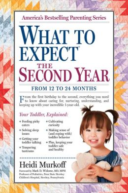 What to Expect the Second Year: From 12 to 24 Months