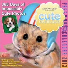2013 Cute Overload Page-A-Day Calendar
