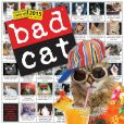 Book Cover Image. Title: 2015 Bad Cat Wall Calendar, Author: Workman Publishing
