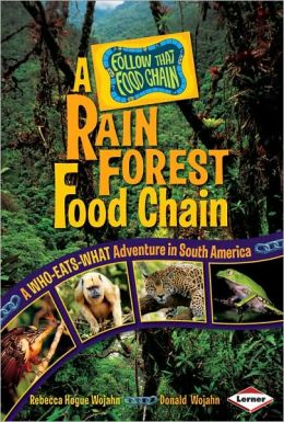 A Rain Forest Food Chain
