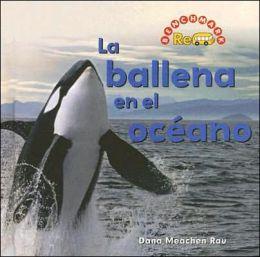 La Ballena en el Oceano / Whale in the Water