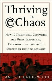 Thriving in E-Chaos: Discover the Secrets of 20 Companies That Have Conquered a Turbulent Marketplace