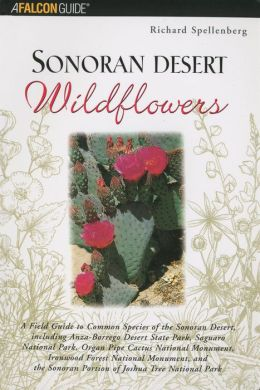 Sonoran Desert Wildflowers: A Field Guide to the Common Wildflowers of the Sonoran Desert