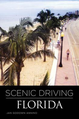 Scenic Driving Florida, 3rd Jan Godown Annino