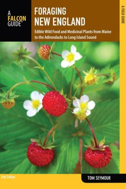 Foraging New England, 2nd: Edible Wild Food and Medicinal Plants from Maine to the Adirondacks to Long Island Sound
