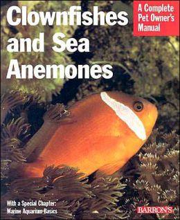 Clownfish & Sea Anemones