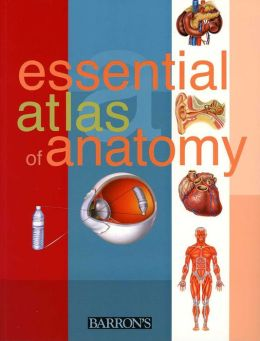 Essential Atlas of Anatomy