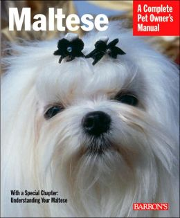 Maltese: Everything about Purchase, Care, Nutrition, Behavior, and Training