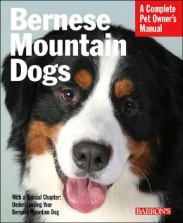 Bernese Mountain Dogs: Everything about Purchase, Care, Nutrition, Behavior and Training
