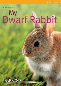 My Dwarf Rabbit: My Pet Series