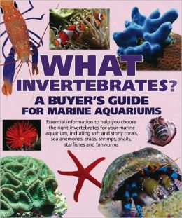 What Invertebrates?: A Buyer's Guide for Marine Aquariums (What Pet? Books Series)