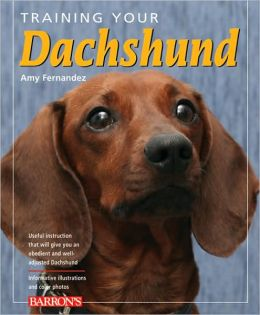 Training Your Dachshund