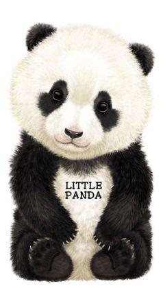 Little Panda (Look at Me Books Series)