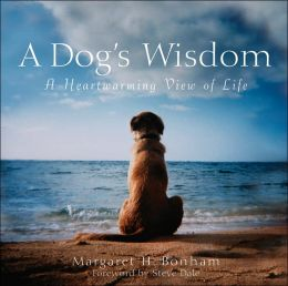 Dog's Wisdom: A Heartwarming View of Life