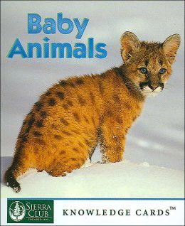Baby Animals: Knowledge Cards