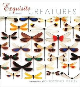 2011 Exquisite Creatures Wall Calendar