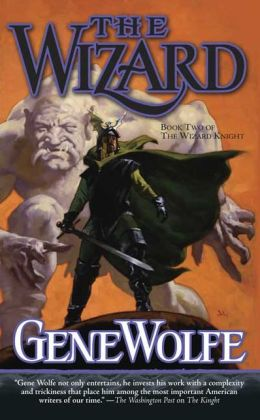 The Wizard (Wizard Knight Series #2)