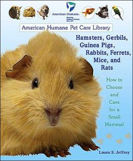 Hamsters, Gerbils, Guinea Pigs, Rabbits, Ferrets, Mice, and Rats: How to Choose and Care for a Small Mammal