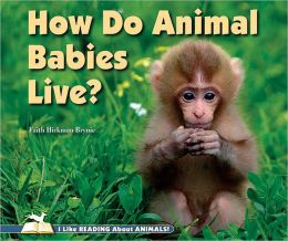 How Do Animal Babies Live?