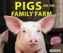 Pigs on the Family Farm
