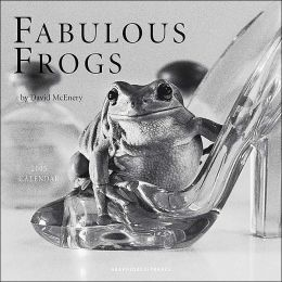 2005 Fabulous Frogs Wall Calendar