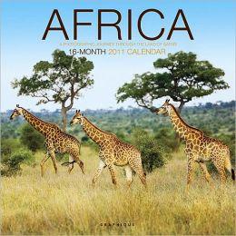 2011 Africa Wall Calendar
