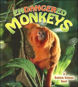 Endangered Monkeys