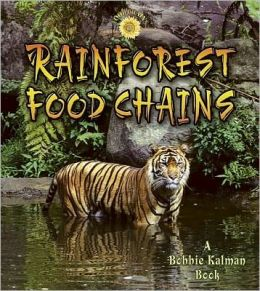 Rainforest Food Chains