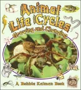 Animal Life Cycles: Growing and Changing
