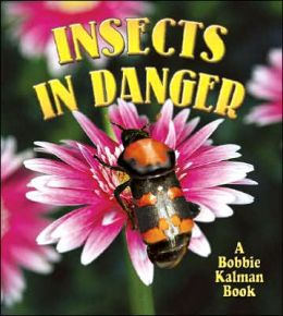 Insects in Danger