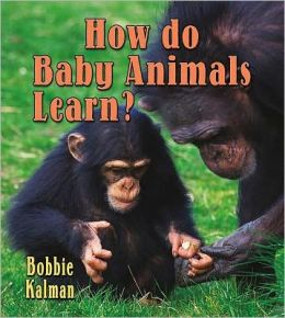 How Do Baby Animals Learn?